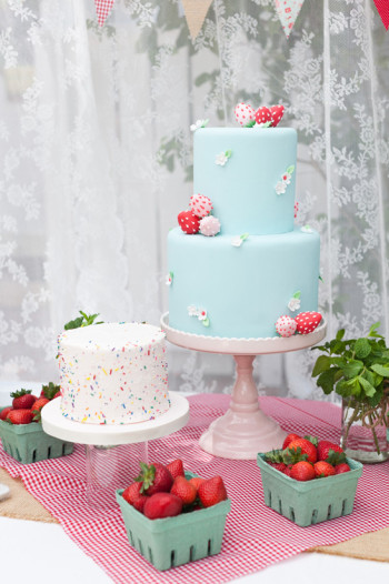 berry-sweet-birthday-2